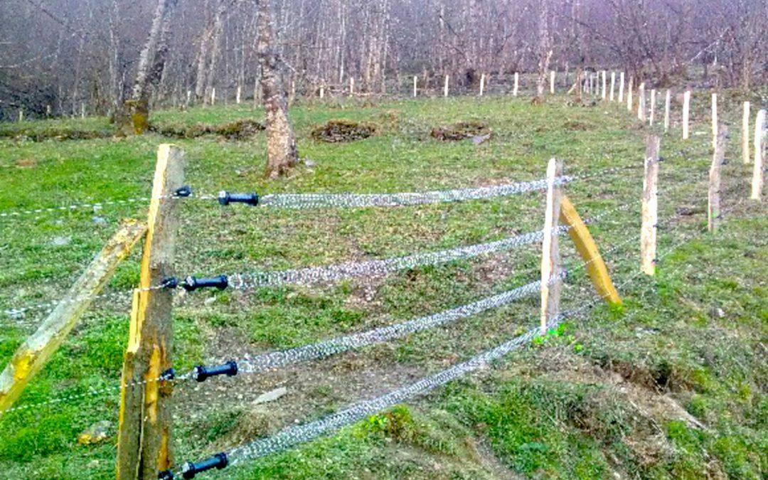 Les activités du moment pour les salariés d'Irisse : pose d'une clôture chez un éleveur en zone de montagne proche de Salau